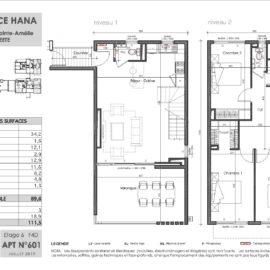 Residence Hana plan Duplex 2